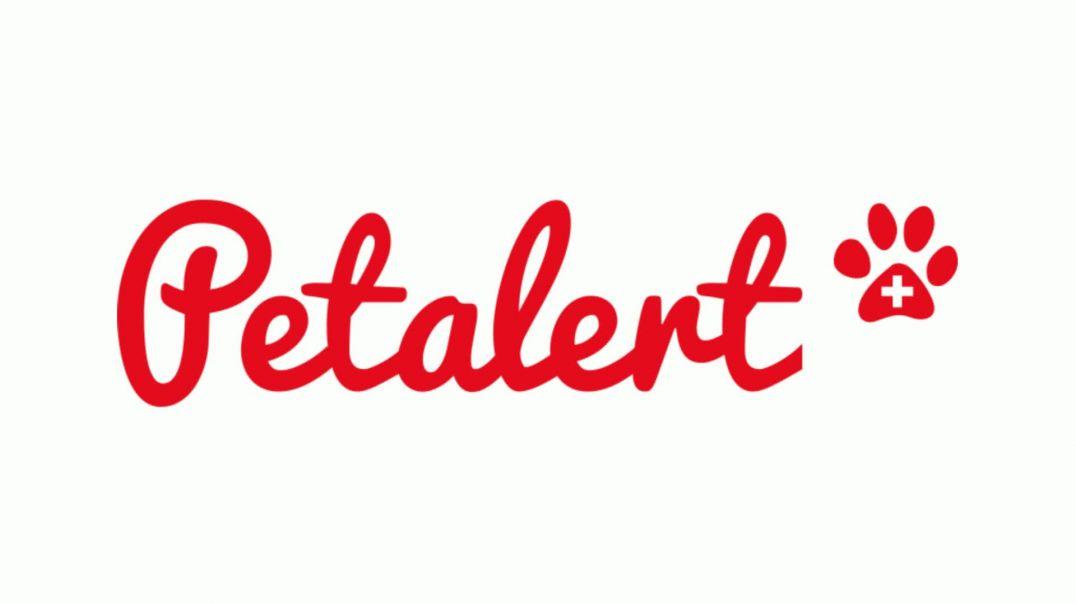 PetAlert presentation