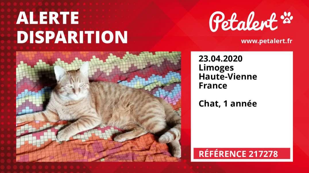 Alerte Disparition #217278 Limoges / Haute-Vienne / France