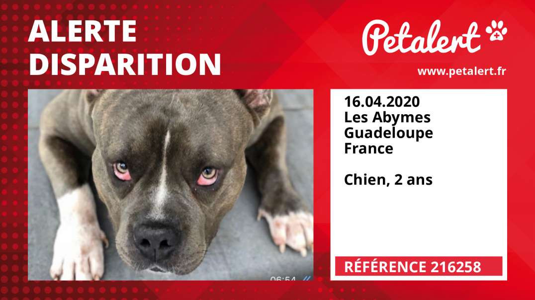 Alerte Disparition #216258 Les Abymes / Guadeloupe / France