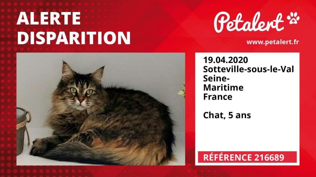 Alerte Disparition #216689 Sotteville-sous-le-Val / Seine-Maritime / France