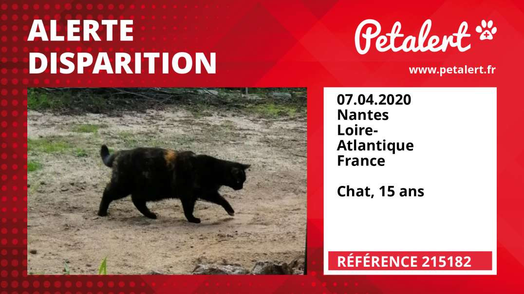 Alerte Disparition #215182 Nantes / Loire-Atlantique / France