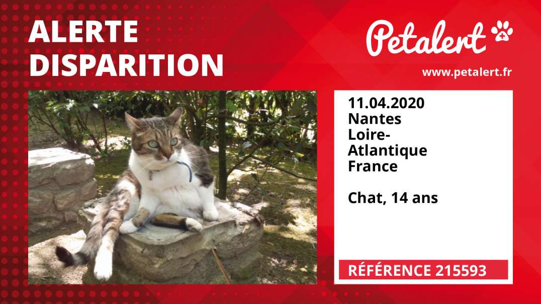 Alerte Disparition #215593 Nantes / Loire-Atlantique / France