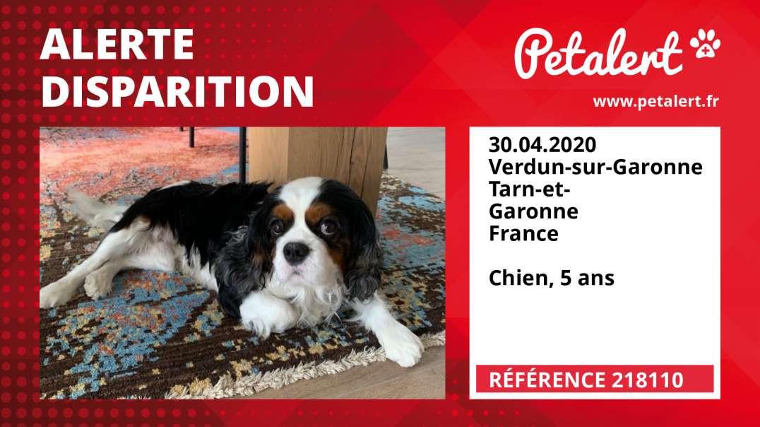 Alerte Disparition #218110 Verdun-sur-Garonne / Tarn-et-Garonne / France