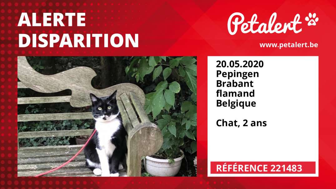 Alerte Disparition #221483 Pepingen / Brabant flamand / Belgique