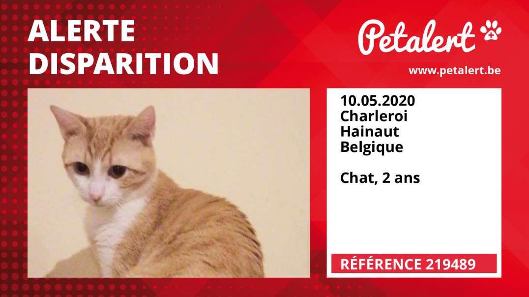 Alerte Disparition #219489 Charleroi / Hainaut / Belgique