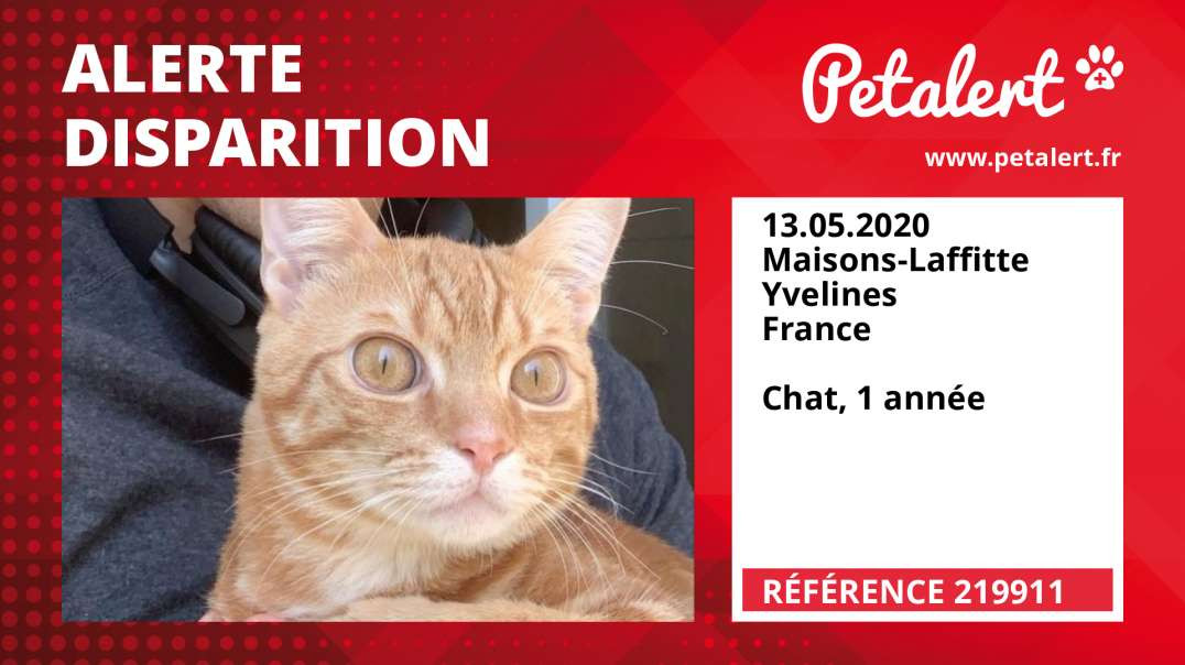 Alerte Disparition #219911 Maisons-Laffitte / Yvelines / France
