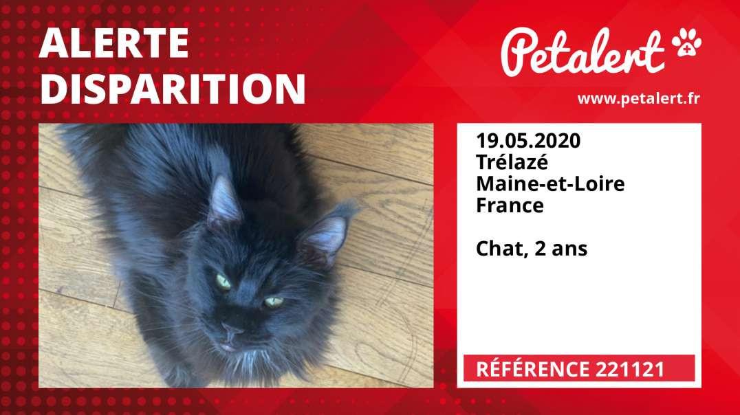 Alerte Disparition #221121 Trélazé / Maine-et-Loire / France
