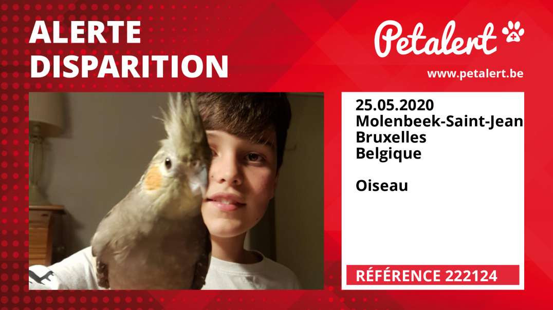 Alerte Disparition #222124 Molenbeek-Saint-Jean / Bruxelles / Belgique