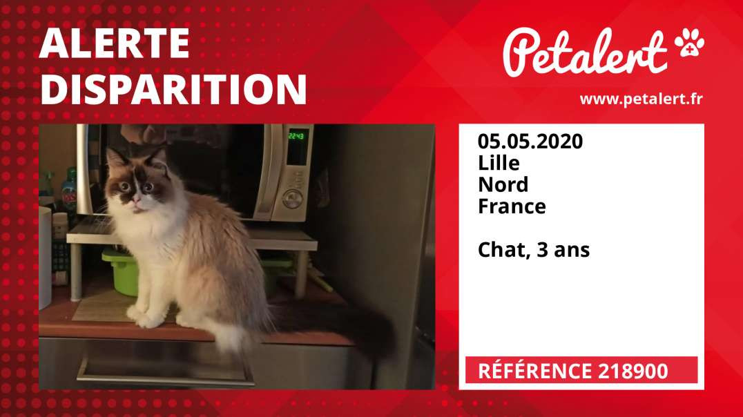 Alerte Disparition #218900 Lille / Nord / France