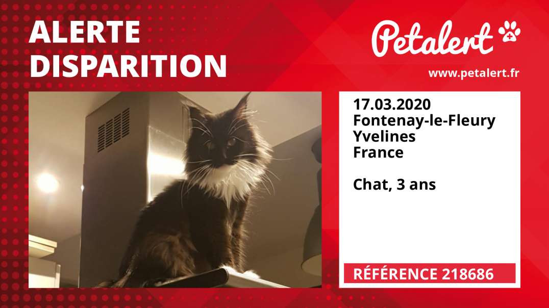 Alerte Disparition #218686 Fontenay-le-Fleury / Yvelines / France