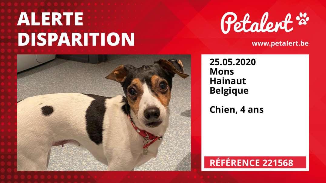 Alerte Disparition #221568 Mons / Hainaut / Belgique