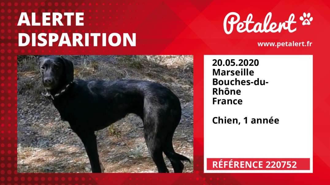 Alerte Disparition #220752 Marseille / Bouches-du-Rhône / France