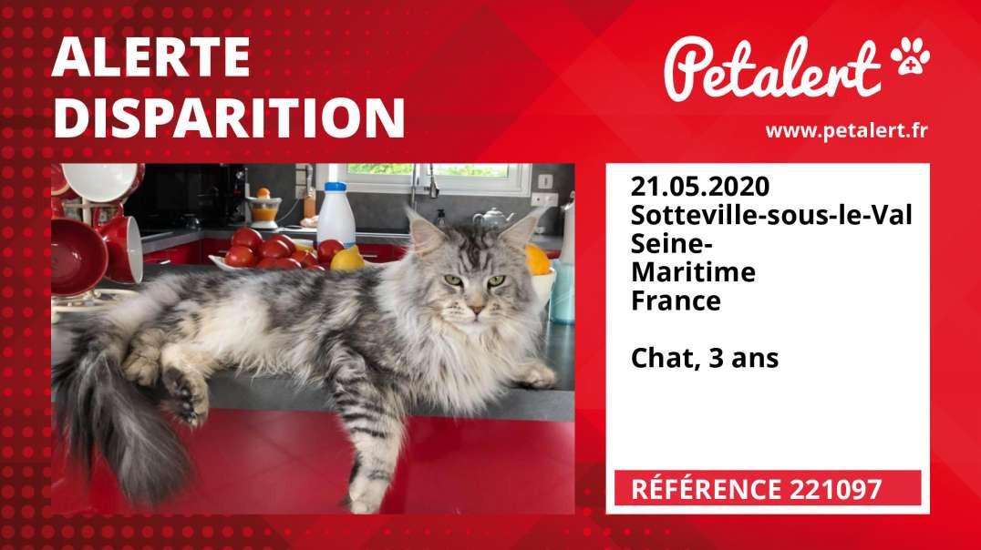 Alerte Disparition #221097 Sotteville-sous-le-Val / Seine-Maritime / France