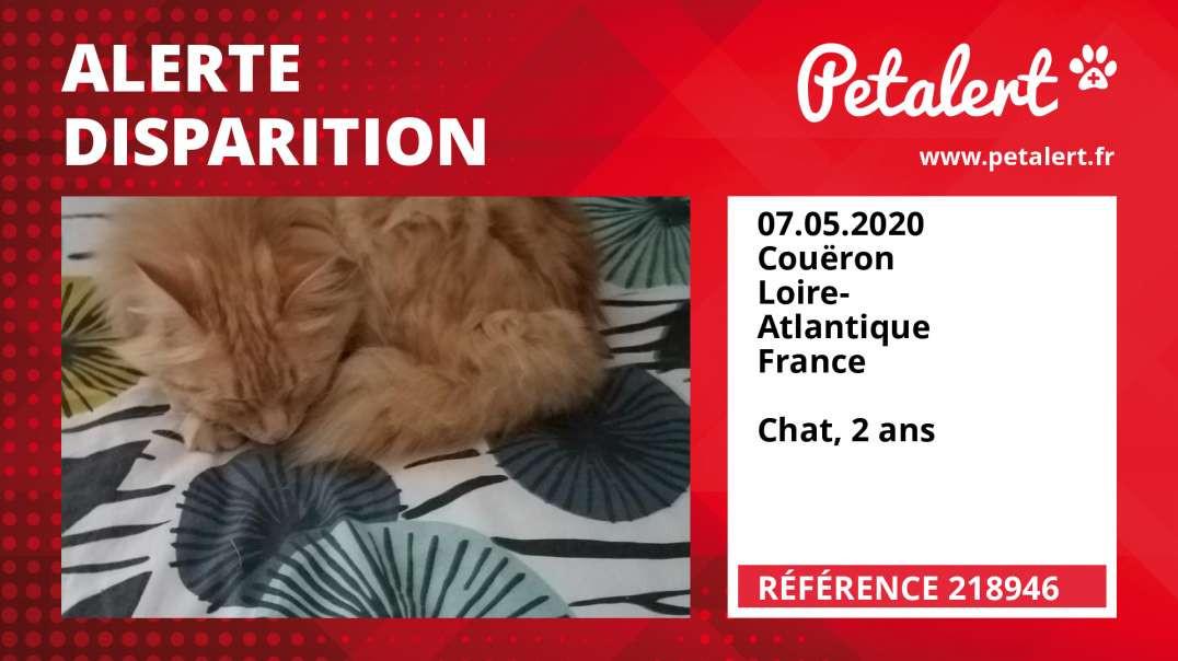 Alerte Disparition #218946 Couëron / Loire-Atlantique / France