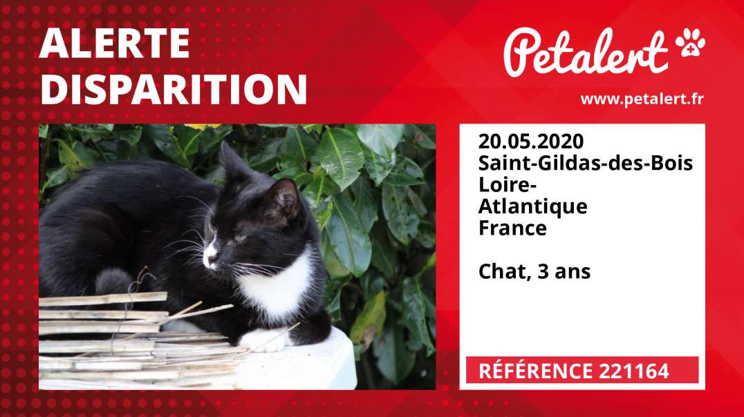 Alerte Disparition #221164 Saint-Gildas-des-Bois / Loire-Atlantique / France