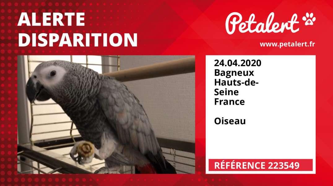 Alerte Disparition #223549 Bagneux / Hauts-de-Seine / France