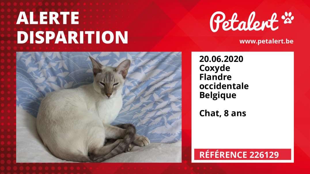 Alerte Disparition #226129 Coxyde / Flandre occidentale / Belgique