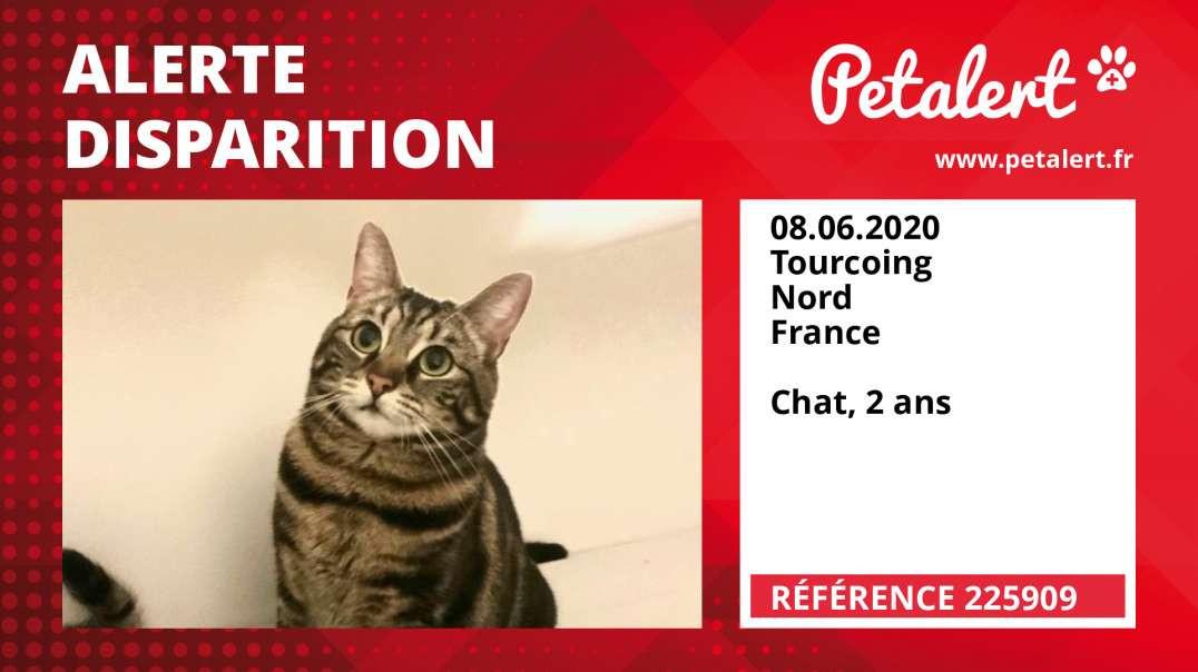 Alerte Disparition #225909 Tourcoing / Nord / France