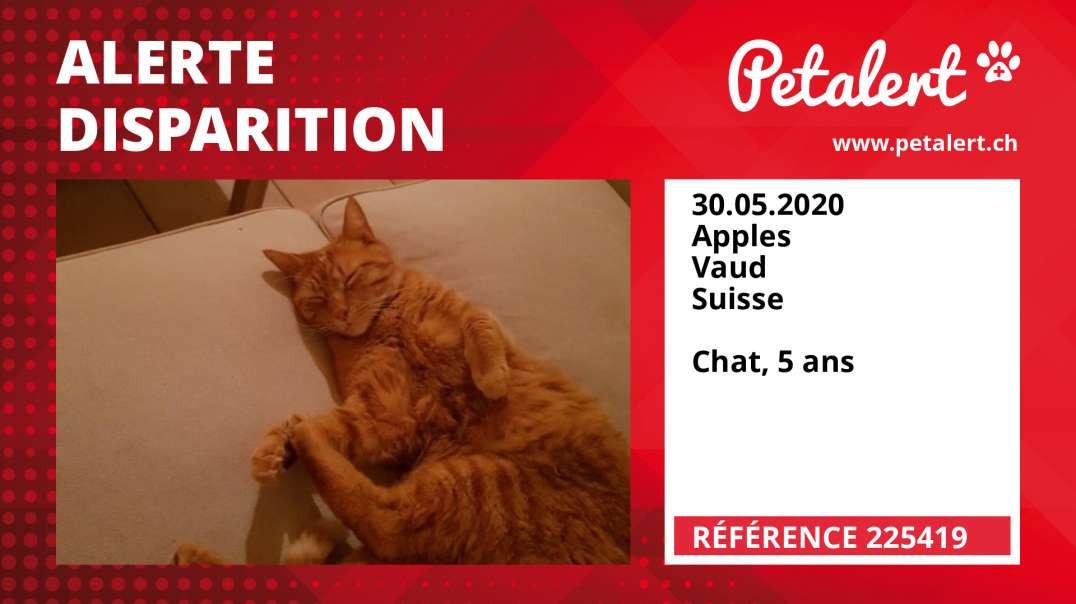 Alerte Disparition #225419 Apples / Vaud / Suisse