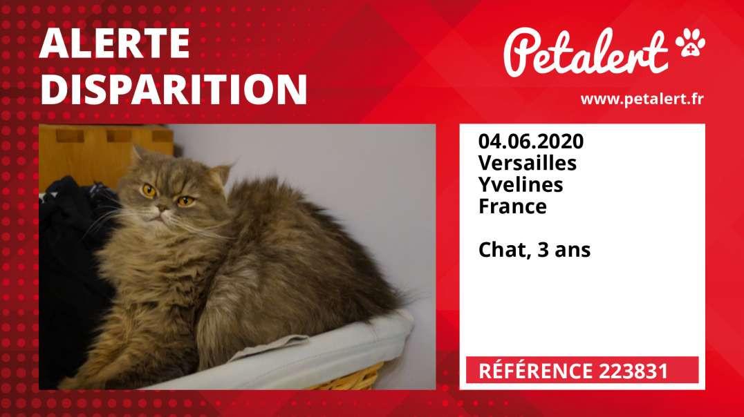 Alerte Disparition #223831 Versailles / Yvelines / France