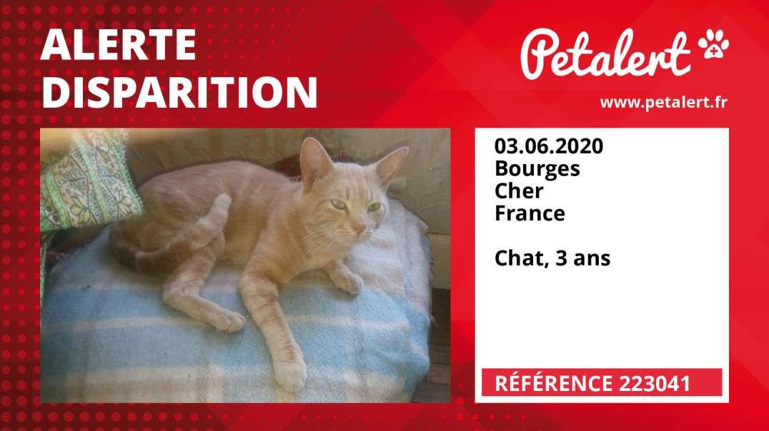 Alerte Disparition #223041 Bourges / Cher / France
