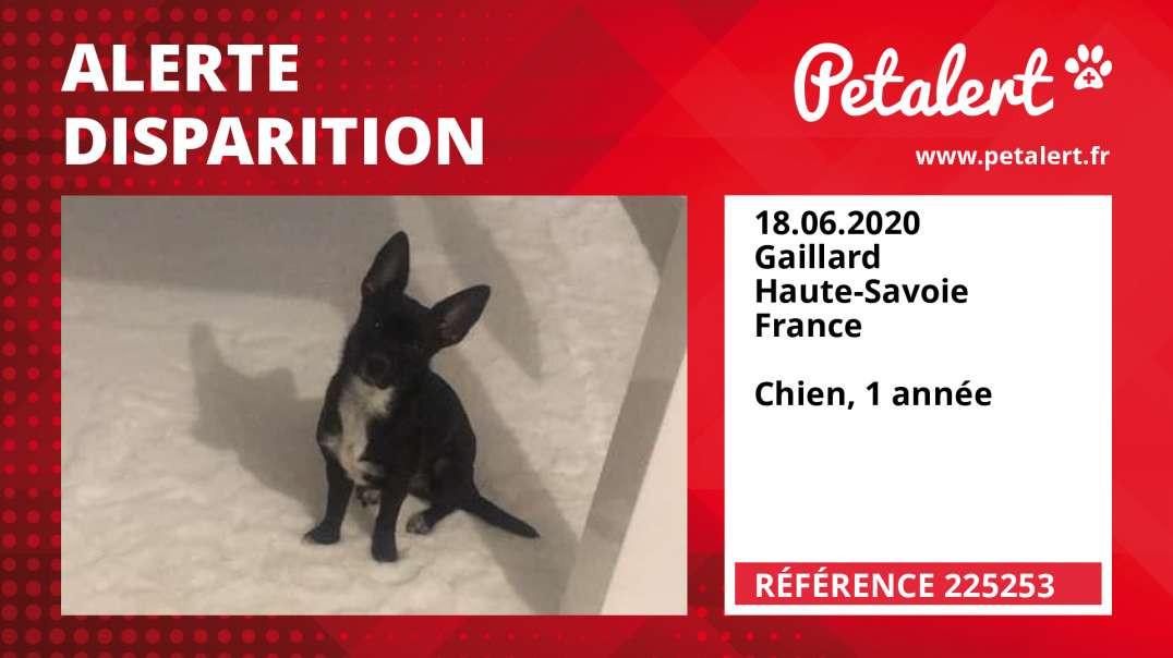 Alerte Disparition #225253 Gaillard / Haute-Savoie / France