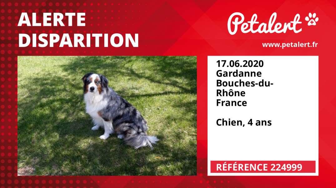 Alerte Disparition #224999 Gardanne / Bouches-du-Rhône / France