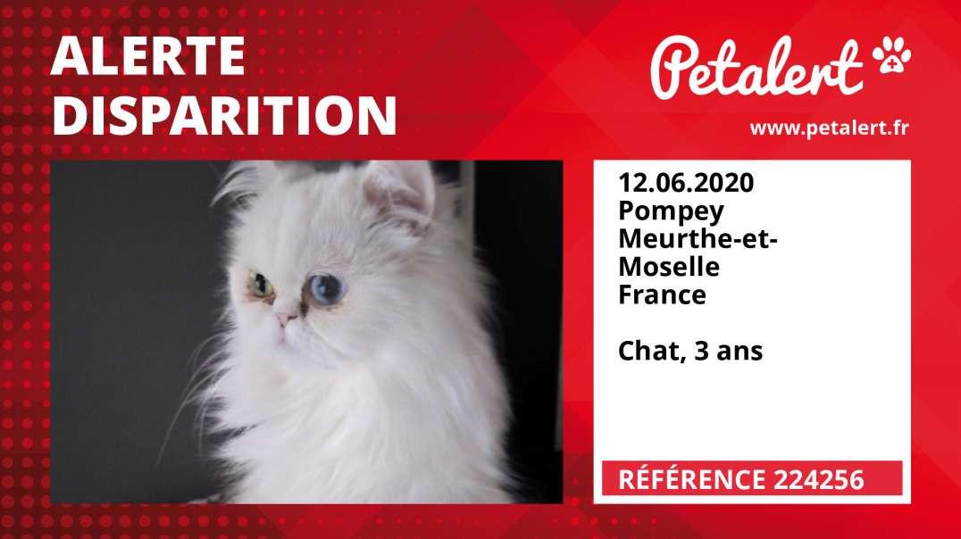 Alerte Disparition #224256 Pompey / Meurthe-et-Moselle / France