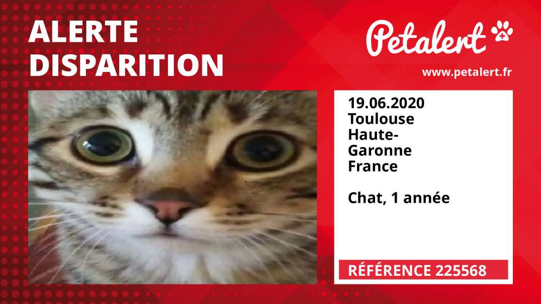 Alerte Disparition #225568 Toulouse / Haute-Garonne / France