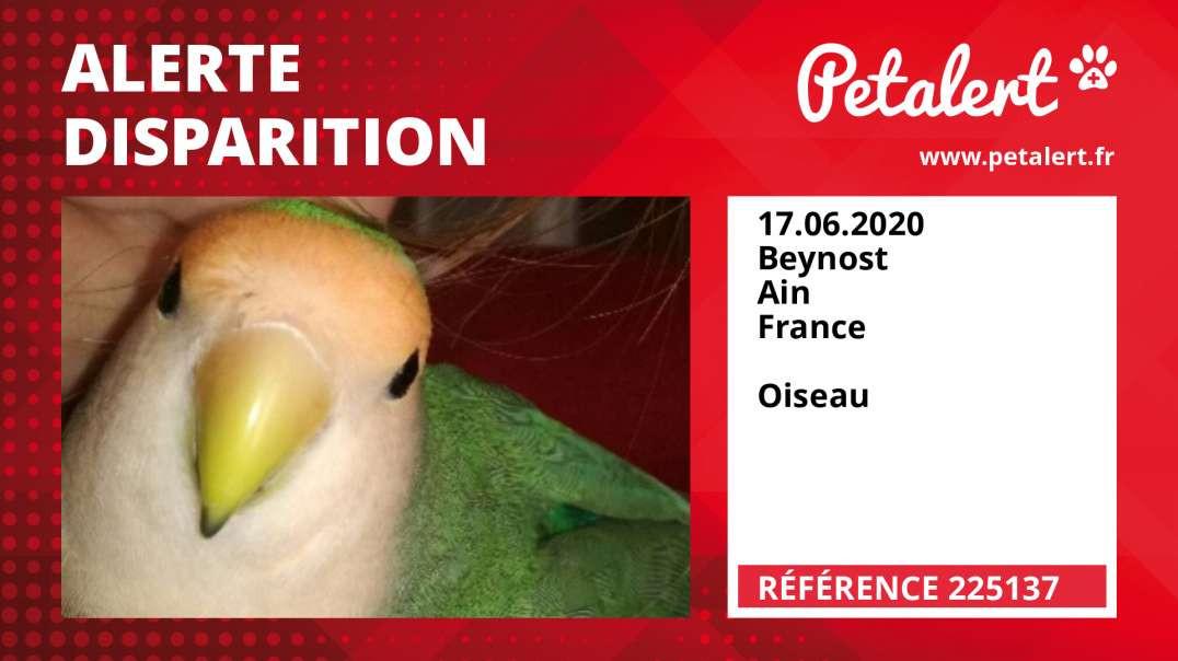 Alerte Disparition #225137 Beynost / Ain / France