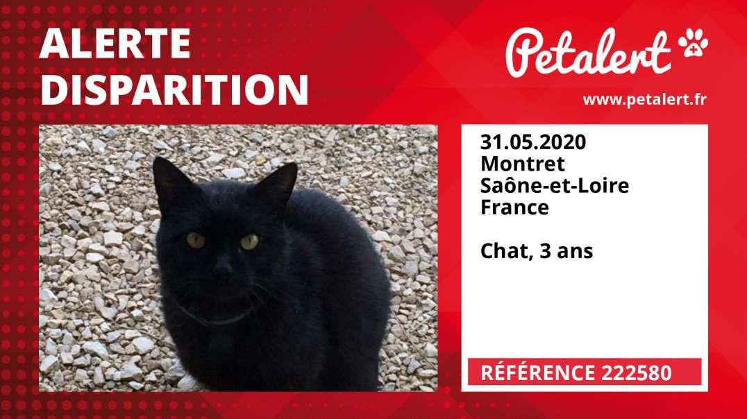 Alerte Disparition #222580 Montret / Saône-et-Loire / France