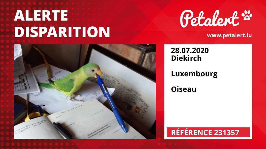 Alerte Disparition #231357 Diekirch /  / Luxembourg