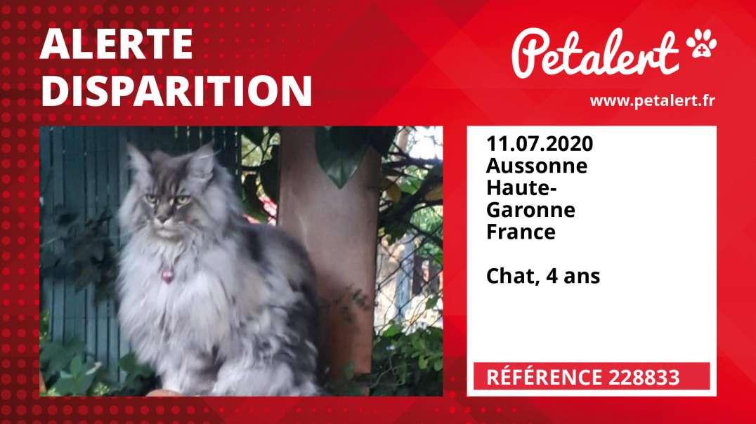 Alerte Disparition #228833 Aussonne / Haute-Garonne / France