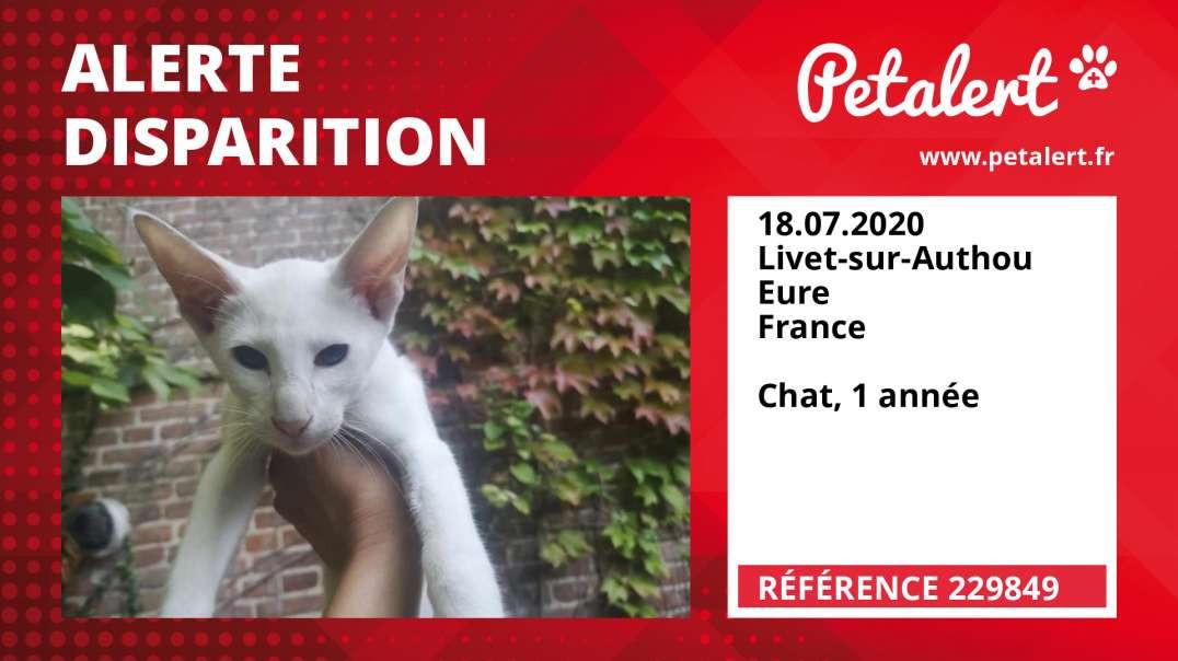 Alerte Disparition #229849 Livet-sur-Authou / Eure / France