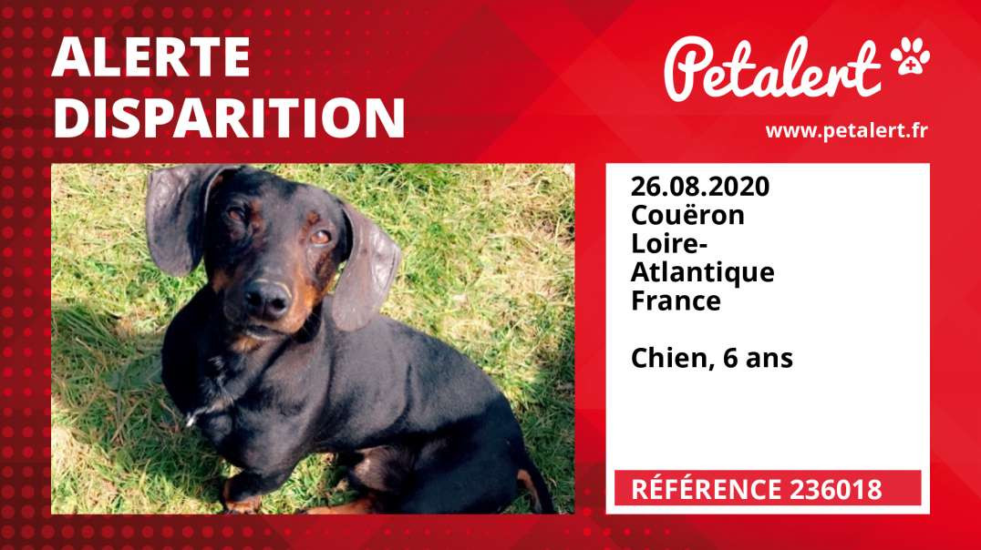 Alerte Disparition #236018 Couëron / Loire-Atlantique / France
