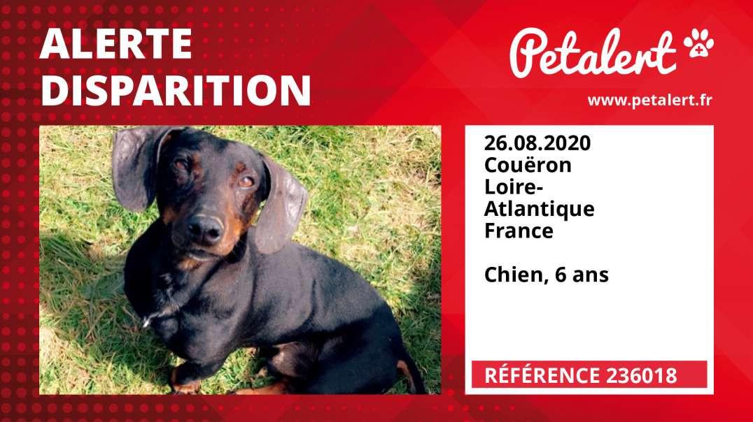 Alerte Disparition #236018 Couëron / Loire-Atlantique / France