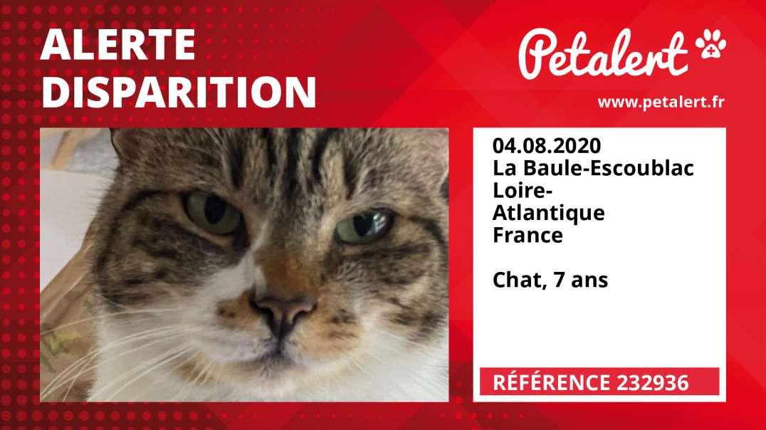 Alerte Disparition #232936 La Baule-Escoublac / Loire-Atlantique / France