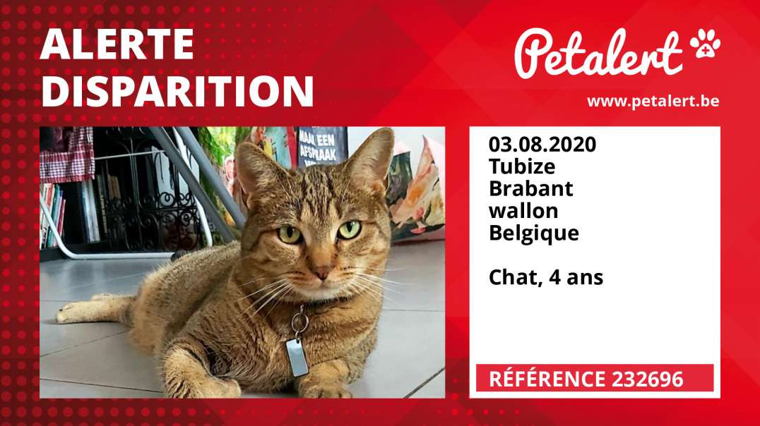 Alerte Disparition #232696 Tubize / Brabant wallon / Belgique