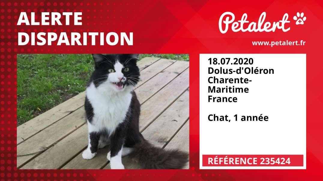 Alerte Disparition #235424 Dolus-d'Oléron / Charente-Maritime / France