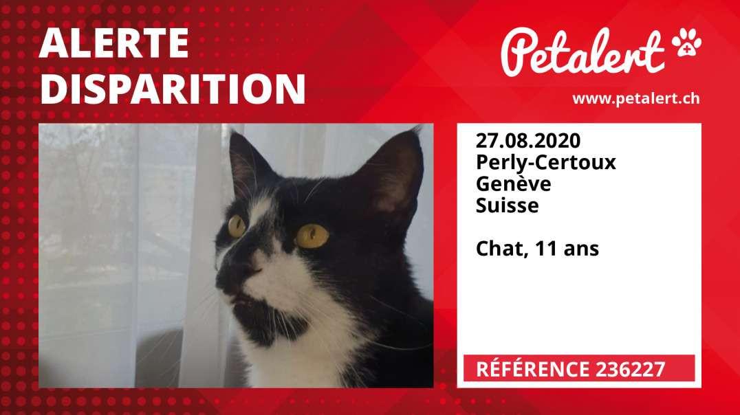 Alerte Disparition #236227 Perly-Certoux / Genève / Suisse