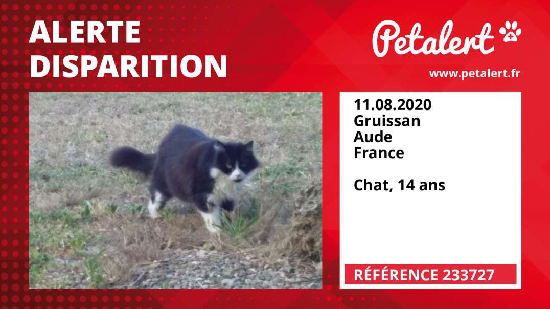 Alerte Disparition #233727 Gruissan / Aude / France