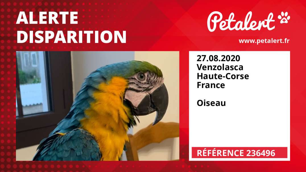 Alerte Disparition #236496 Venzolasca / Haute-Corse / France
