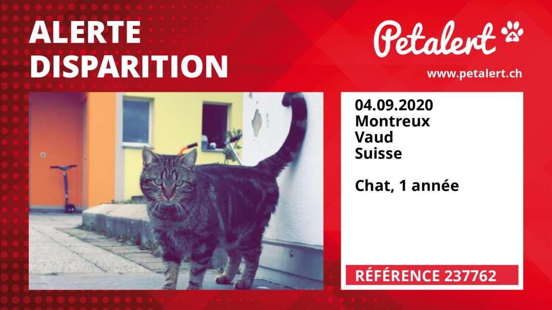 Alerte Disparition #237762 Montreux / Vaud / Suisse