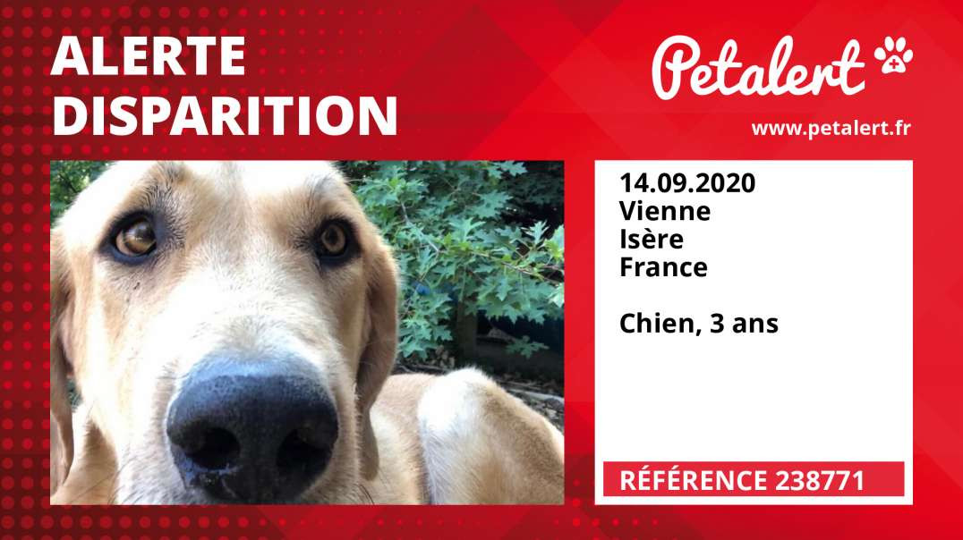 Alerte Disparition #238771 Vienne / Isère / France