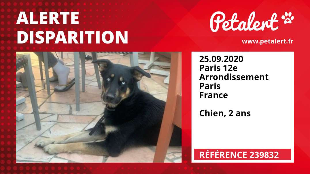 Alerte Disparition #239832 Paris 12e Arrondissement / Paris / France
