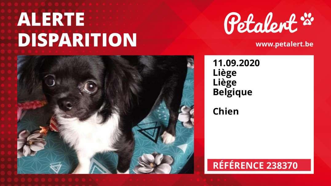 Alerte Disparition #238370 Liège / Liège / Belgique