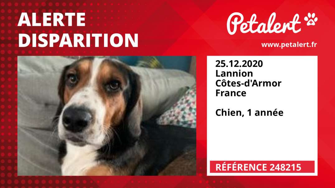 Alerte Disparition #248215 Lannion / Côtes-d'Armor / France