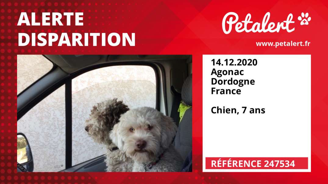 Alerte Disparition #247534 Agonac / Dordogne / France