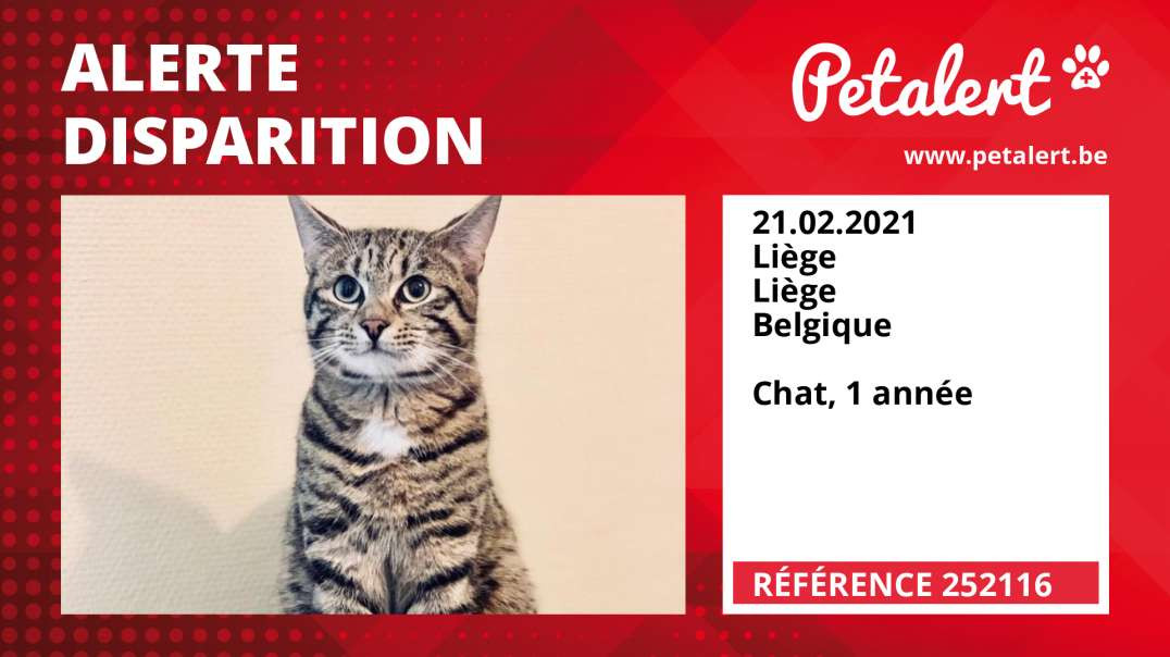 Alerte Disparition #252116 Liège / Liège / Belgique