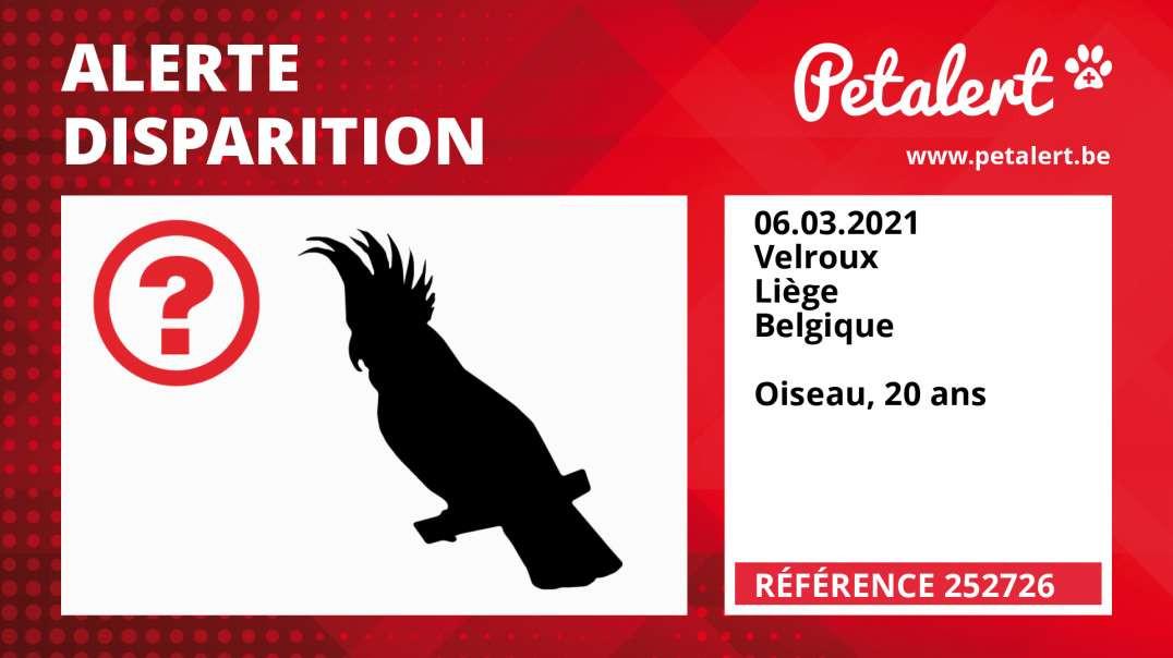 Alerte Disparition #252726 Velroux / Liège / Belgique